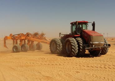 Photo of Brock Deep Ripp in action in the North African desert